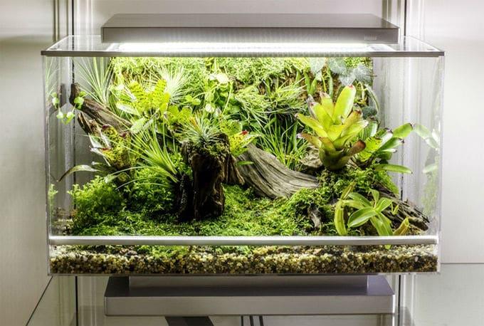 home automation garden